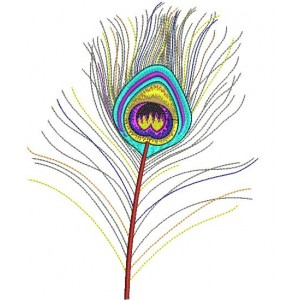 Colourful Peacock Tail Embroidery Designs